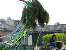 1606-Krimesbaum-0020