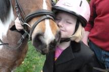 Pferdesegnung--0040