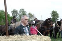 Pferdesegnung--0120