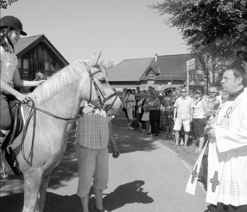 Huppenbroich als Pferdetreff